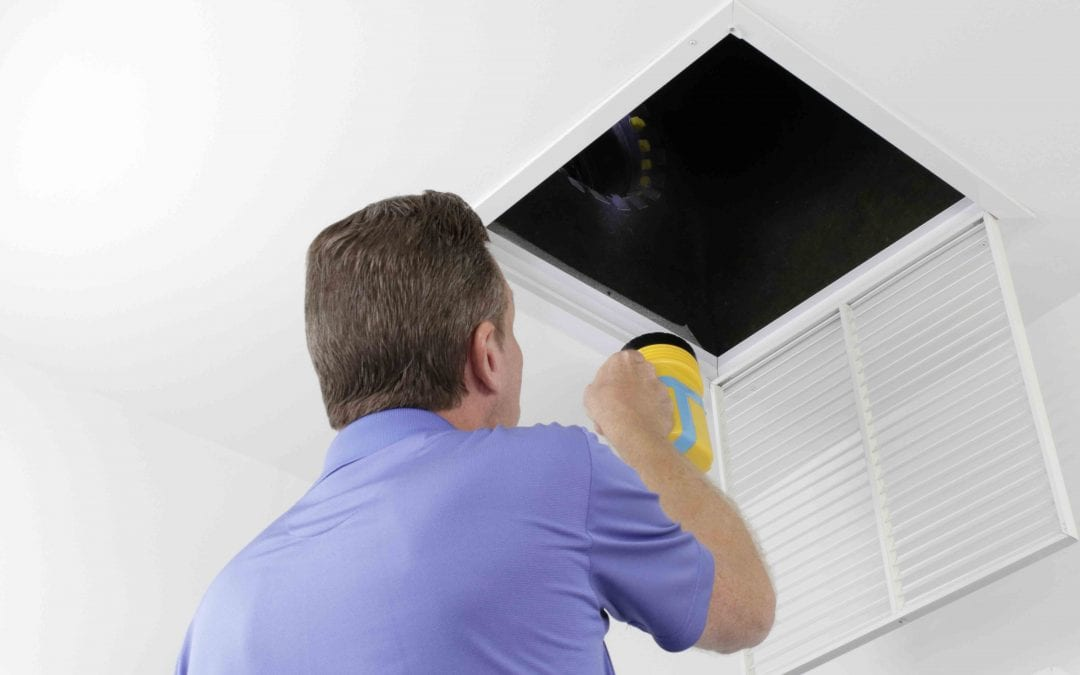 Get Your Flu Shot and Clean Your Air Ducts