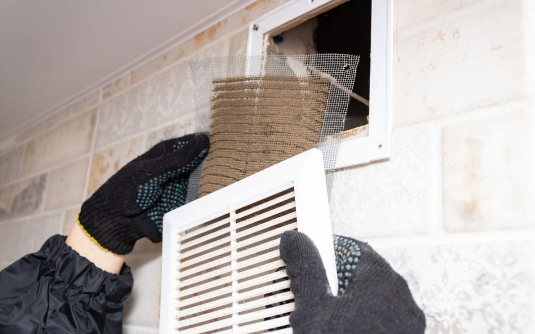 15 Ways to Boost Air Quality and Get Your Home Ready for Fall