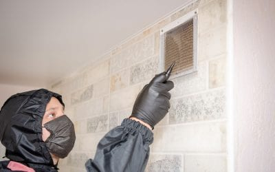 3 Times When Duct Cleaning is Absolutely Vital